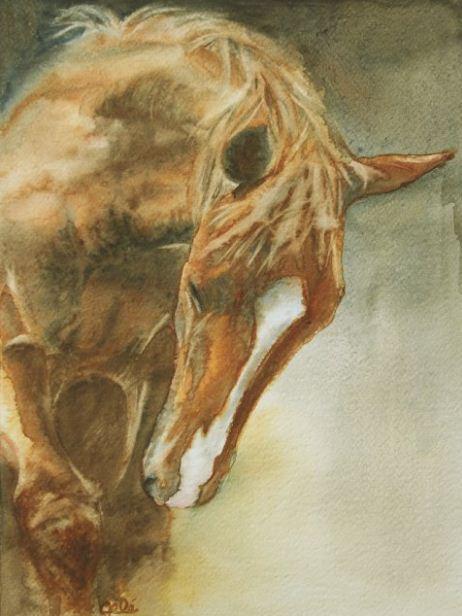 B n dicte gel artiste peintre du cheval equestria for Peinture sur fer a cheval