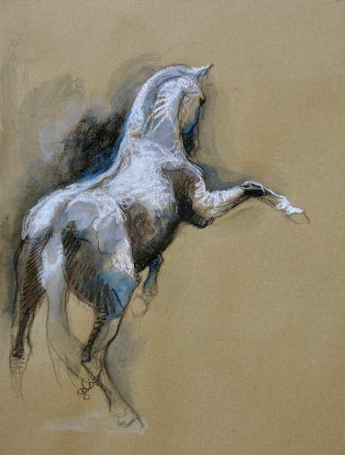 equitation cheval peinture