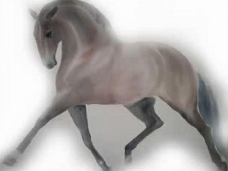 Beatrice bulteau art equestre cheval