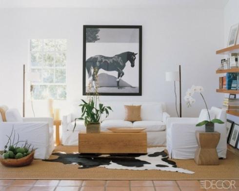 interieur cheval