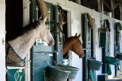 barns, stable