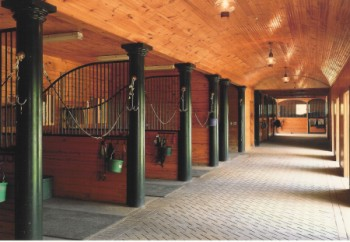 écurie cheval, barns, stable