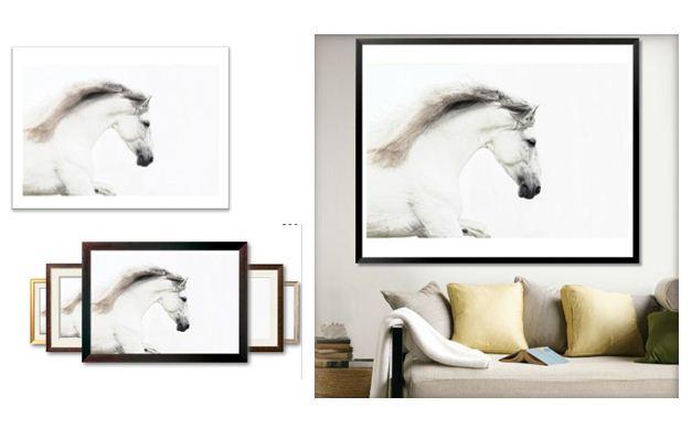 d co cheval equestria page 2. Black Bedroom Furniture Sets. Home Design Ideas